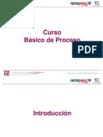 CURSO BASICO DE PROCESO (REFINERIA TALARA)