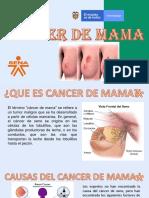 Exposicion Cancer de Mama en Español