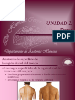 10 Dorso. Anatomía de Superficie