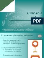 30 Abdomen. Vísceras Abminales, Peritoneo, Cavidad Abdominal