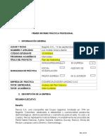 Ejemplo y Formato de Un Primer Informe de Pratica- Resumen Ejecutivo 2018