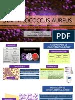 Staphylococcus Aureus (1)