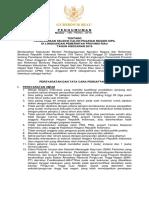 SeleksiCPNSPemprovRiau2019.pdf