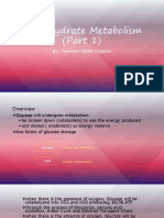 Carbohydrate Metabolism PART 1