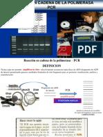 PCR.pptx