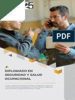 dip-seguridad-y-salud-ocupacional-20192.pdf