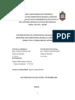Informe de Pasantias Yugenis Finalizado