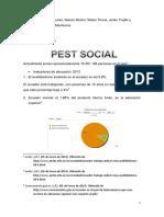 Pest Social Terminado
