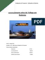 PT - Gerenciamento Ativo de Rodovias