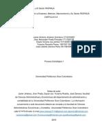 Análisis Del Macroentorno y El Sector RIOPAILA- Entregado