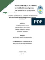 ATMOSFERA CONTROLADA.docx