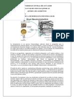 Aplicacion Microbiologia Industrial