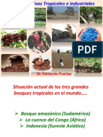 cultivos tropicales