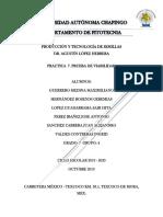 PRACTICA  7. PRUEBA DE VIABILIDAD