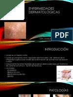 No Fitoterapia en Enfermedades Dermatologicas