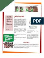 Boletín FOSYGA Bibiana Orjuela UNAB