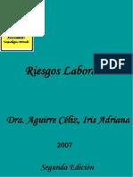 riesgos_laborales_1.pdf