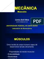 musculos_2.ppt
