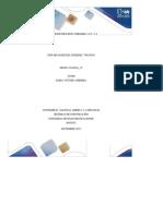 GoodSlide.Org-COMPONENTE PRACTICO UNIDADES 1,2,3 Y 4 EDWARD MARTINEZ CESPEDES 79925938 GRUPO 2150504_15 TUTOR MARIA VICTORIA HERRERA UNIVERSIDAD NACIONAL ABIERTA Y A DISTANC.docx