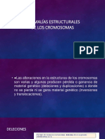 Presentación (3).pptx