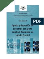 Apatia y depresion por lesiones lobulo frontal.pdf