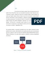 Desarrollo Sustentable (2).docx