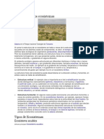 Ecosistema 22