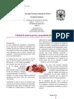 376032141-Informe-Calidad-Carne.docx
