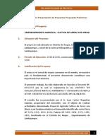 Proyectos Propuesta Preliminaravance