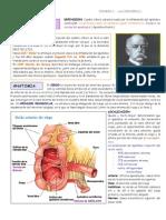 Apendicitis Aguda c