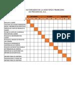 Cronograma de Actividades de la Auditoria Financiera de  Procafecol S.A.docx