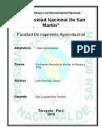 Evaluación Sensorial de Almíbar de Papaya y Piña.