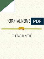 Cranial Nerve VII