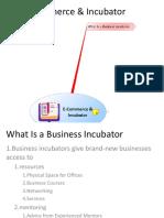 E-Commerce & Incubator