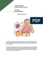 emfermedares de sistema respiratorio y excretor.docx