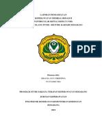 WOC VSD.docx