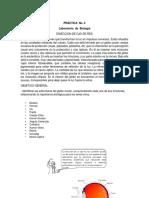 Practica 4 Ojo Biologia (1)