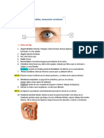 5. Anatomia de La Órbita