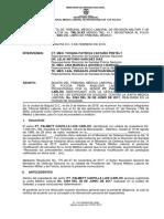 Pt. Palmett Castilla Luis Carlos