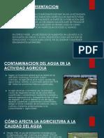 Diapos Contaminacion cusco