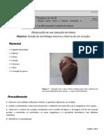 TAS SAUDE 6566_ Protocolo Dissecaçao Coração Porco