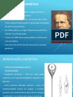 1º Ano EM_Genética_1ªLei de Mendel