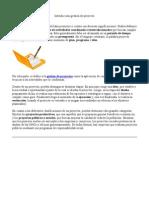 Introducción gestión de proyecto