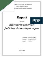 Raport de expertiză