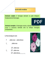 4 - Extenciones Mendel