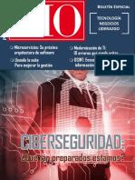 Cio Peru Revista-35