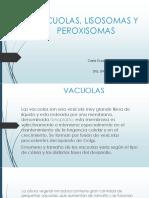 Vacuolas, Lisosomas y peroxisomas