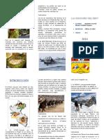 316571489-Las-4-Regiones-Del-Peru.doc