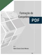 Competencias Gestao de Carreiras e Sistemas de Recursos Humanos 1
