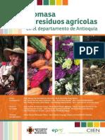 biomasa de residuos agricolas web.pdf